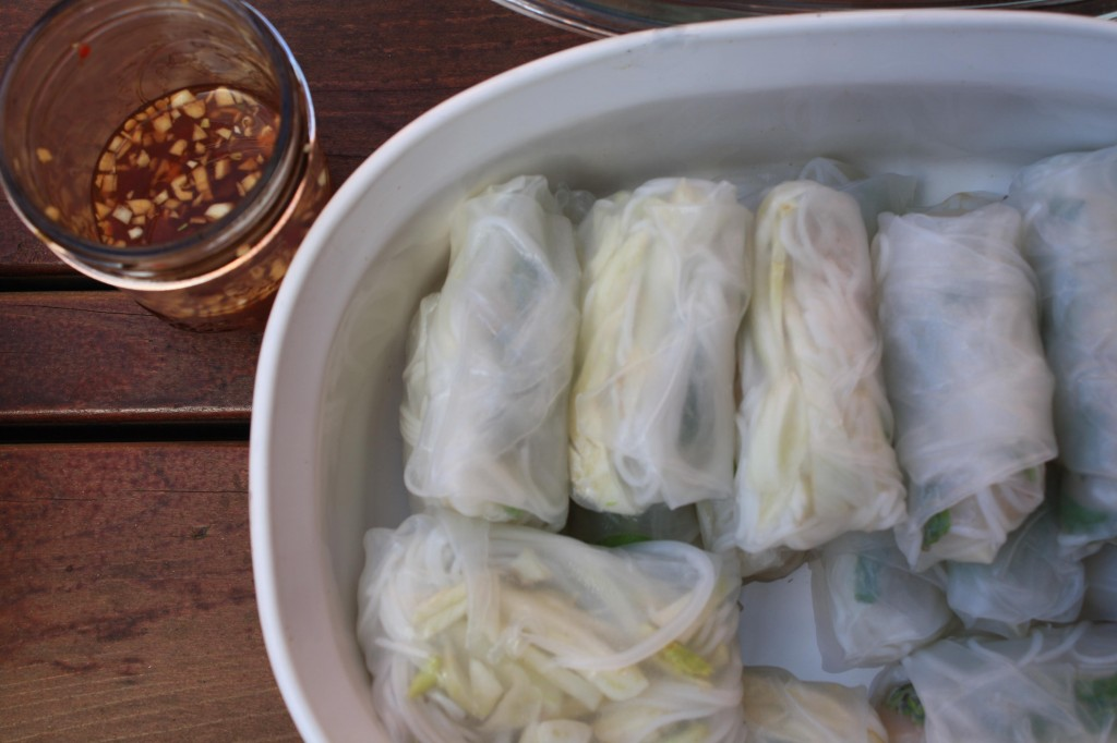 VEGETARIAN RECIPES- Fresh-Fennel-Lychee-Spring-Rolls-with-Black-Tea-Dipping-Sauce_IMG7743