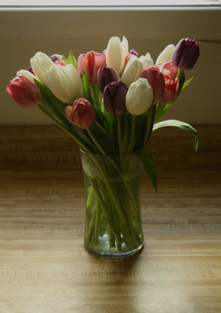 tulips for the cancer caregiver