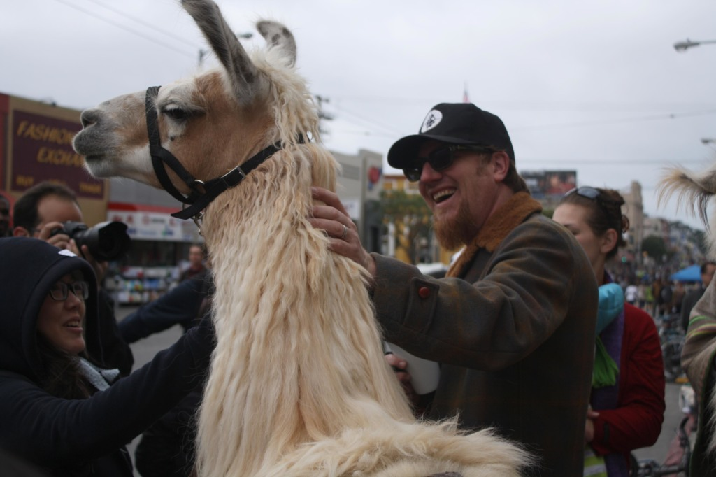 llama and pete from green apple