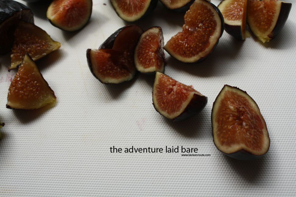 the adventure laid bare