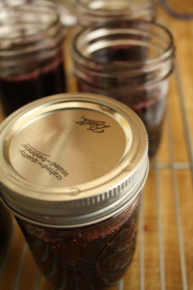 CANNING RECIPES- Morado Fig Concord Grape Jam