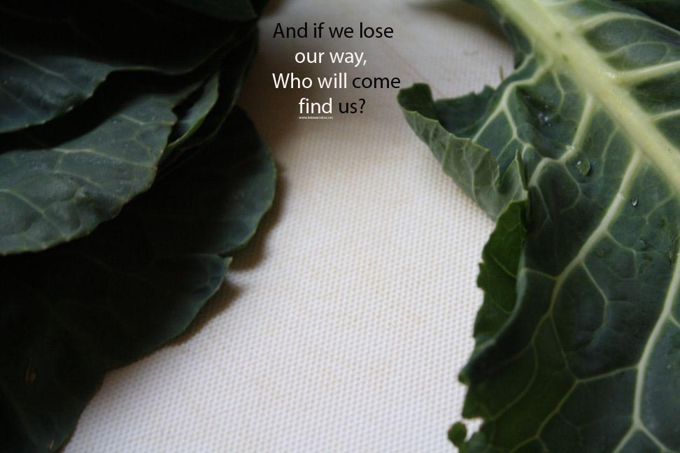 and if we lose our way who will come