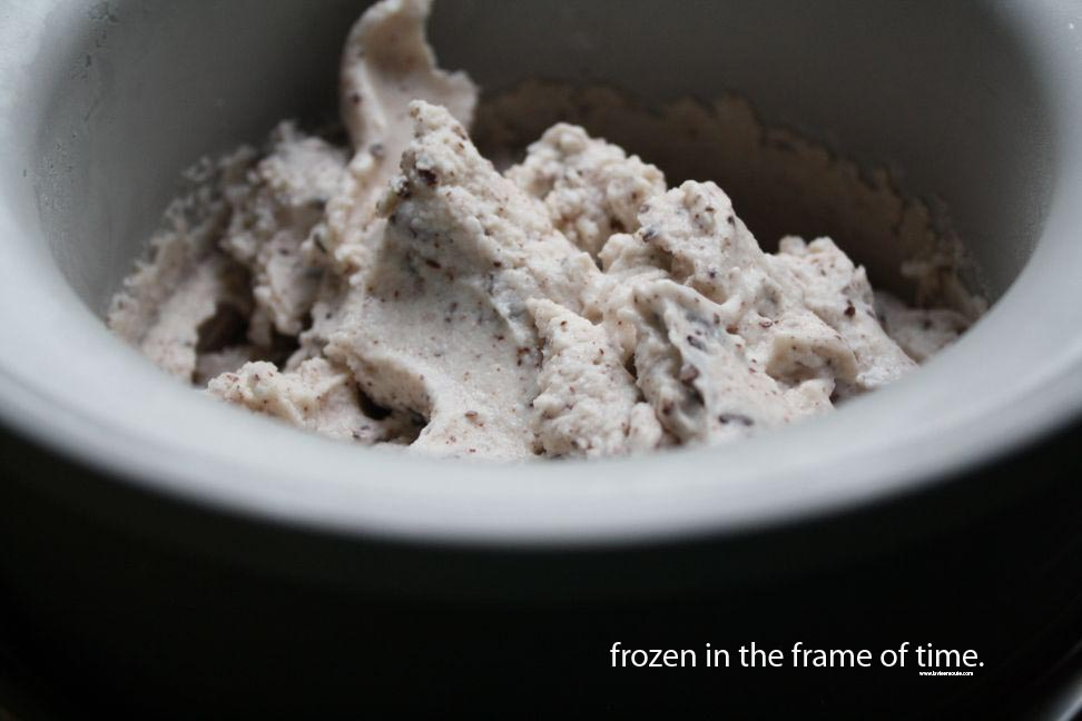 frozen in the frame of time