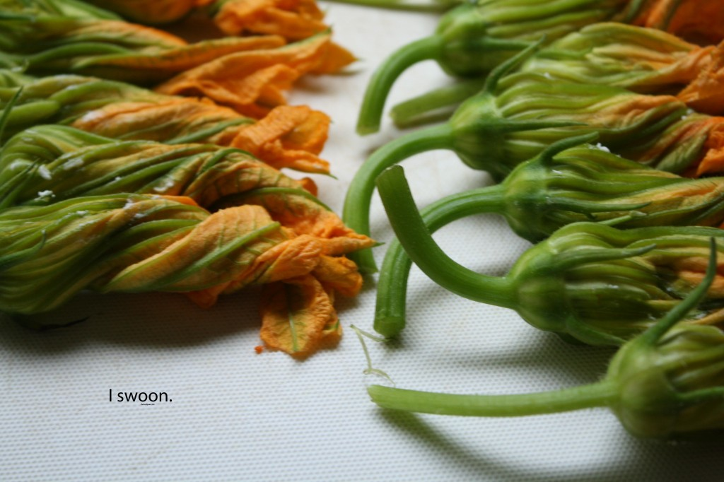 Squash-Blossom-Poppers-Food-Poetry
