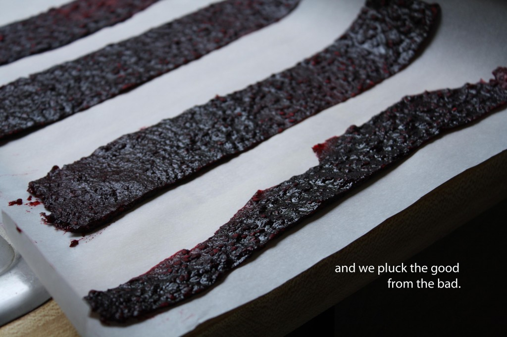 blackberry-chile-lime-fruit-leather-food-poetry