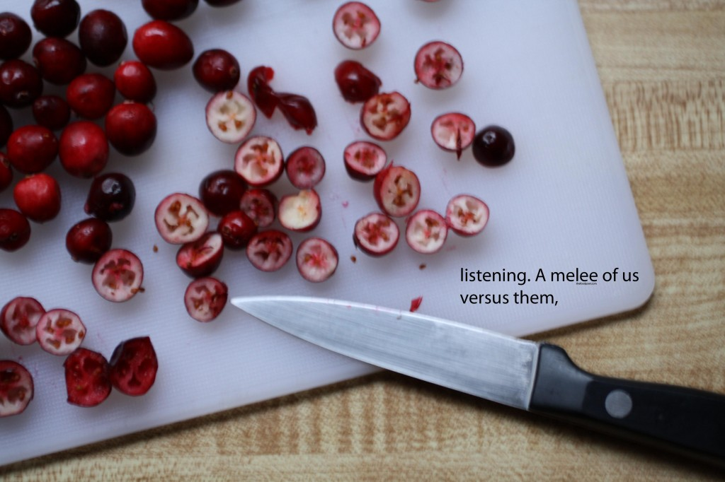 Cranberry Lassi Food Poetry - The Food Poet