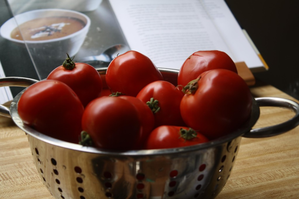 Tomato Poem | The Food Poet