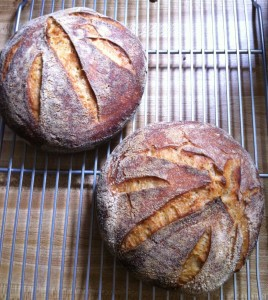 Sourdough Bread - the food poet